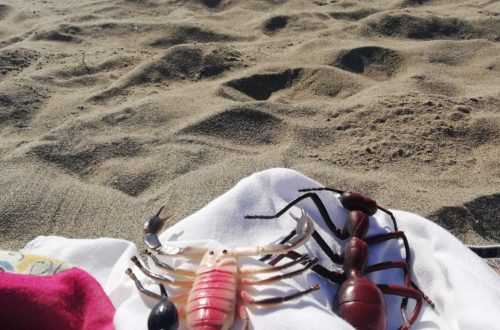in spiaggia raccontando