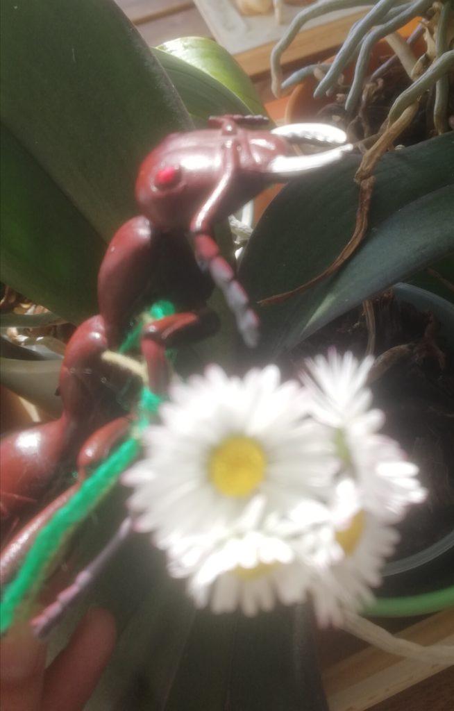 Gertrude con mazzo di fiori