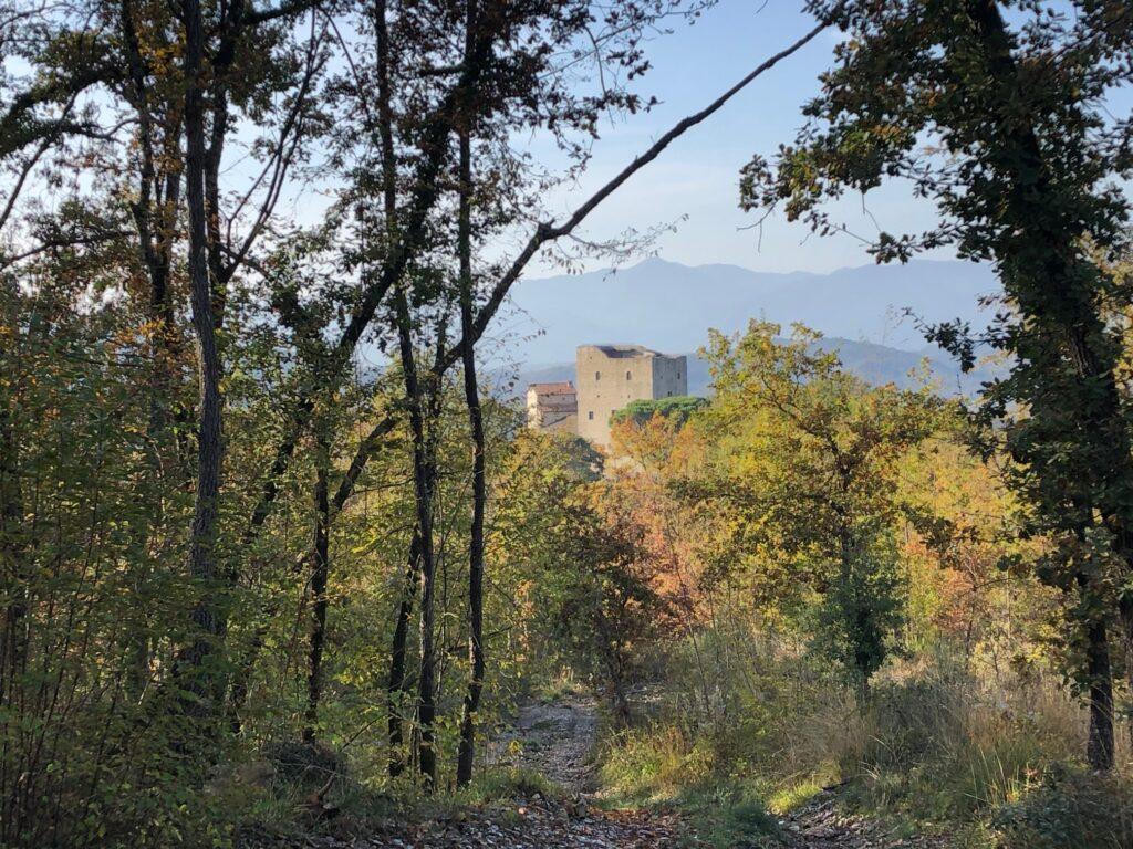 vista del castello dalla strada